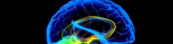 Tajny mozga